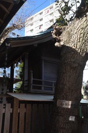20190103元宿神社07