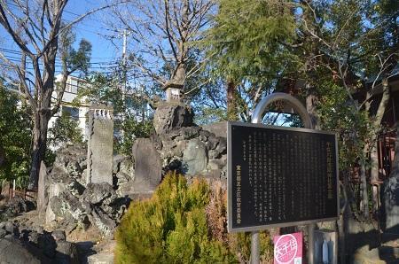 20190104大川町氷川神社17