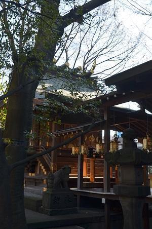 20190104仲川町氷川神社09