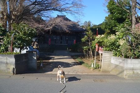 20190107松林寺02