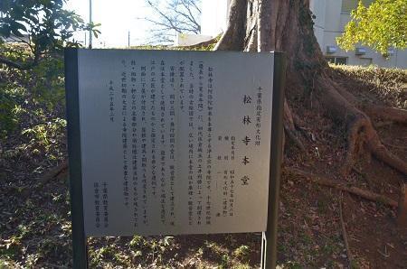 20190107松林寺09