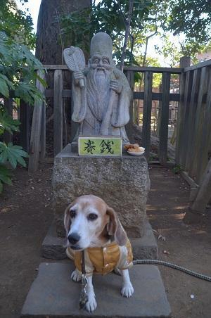 20190107麻賀多神社13
