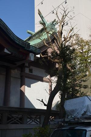 20190108金刀比羅宮東京分社16