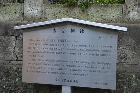 20190108妻恋神社05