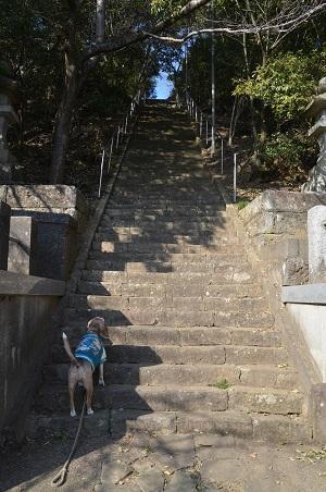 20190120愛宕山公園06
