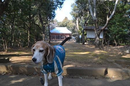 20190120愛宕山公園10