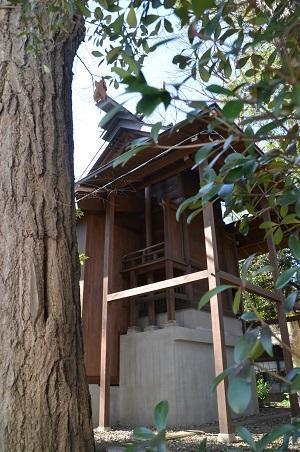20190202七社神社17
