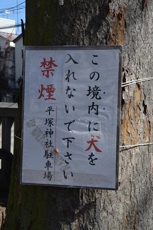 20190202平塚神社05