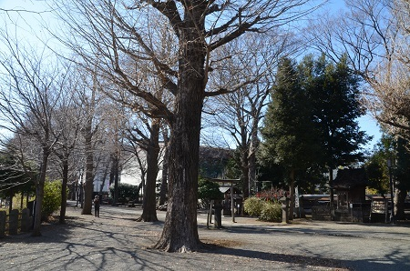 20190202平塚神社26