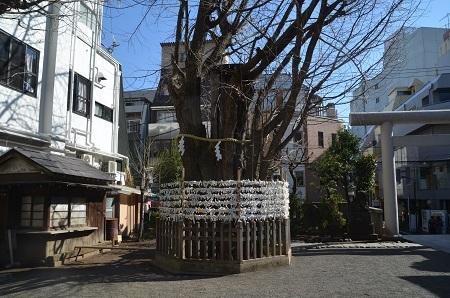 20190202大塚天祖神社18
