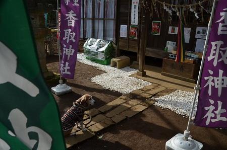 20190207富里香取神社09