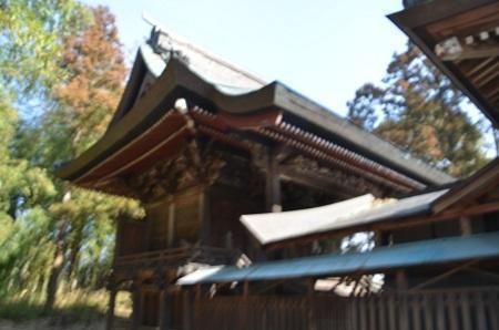 20190216日枝神社11