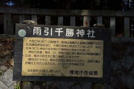 20190216雨引千勝神社06