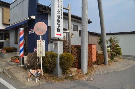 20190226日本の道百選 つくば道04