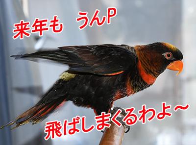 6_うんぴ