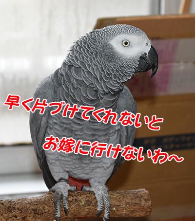 7_片付け
