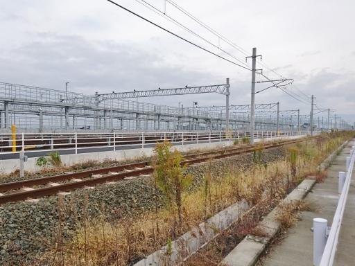 matsuyama6 (7)