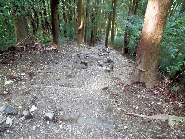 18.10.13 宝登山・ベランダの信号光  (57)