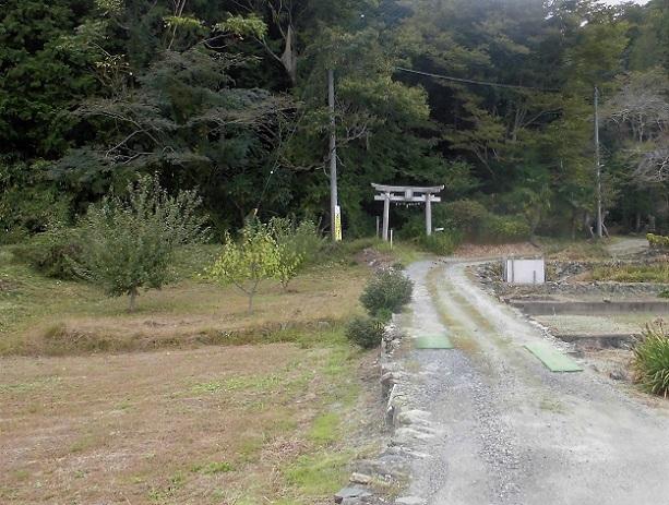 18.10.13 宝登山・ベランダの信号光  (80)