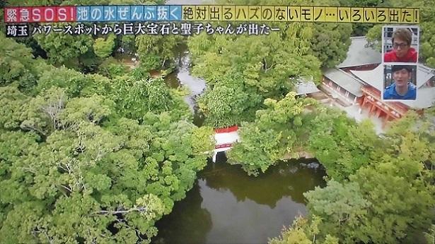 18.10.15 三橋運動公園。池の水抜きます  (7)