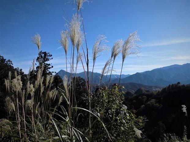 18.11.17 般若山と釜の沢五峰 (55)
