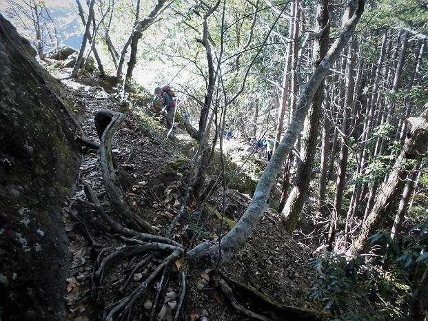 18.11.17 般若山と釜の沢五峰 (76)