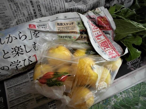 18.12.26 新保さんに貰ったダイコンとクチナシの実 (8)