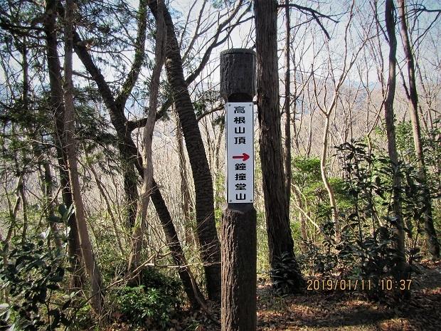 4 19.1.11 高根山~鐘撞堂山 (47)