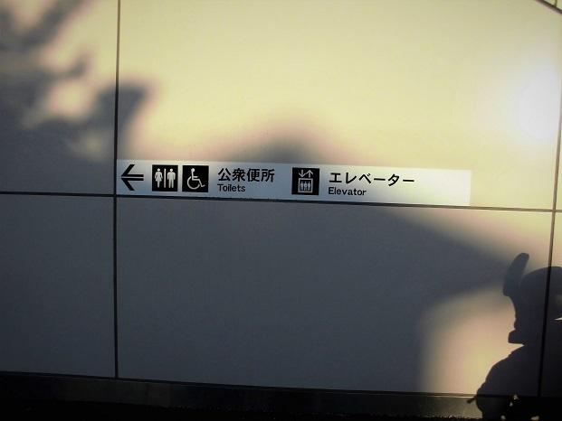 18.11.21 ハイク熊ノ平~めがね橋 (1)