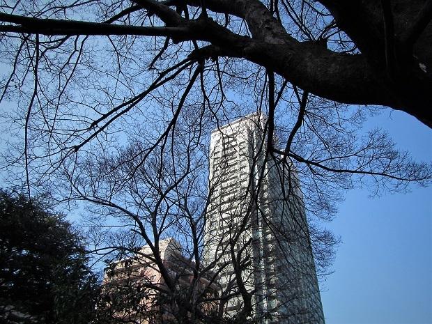 19.3.2 法事正満寺 キネシオ (51)