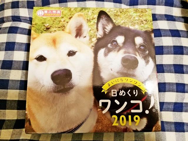 来年のカレンダー1-1