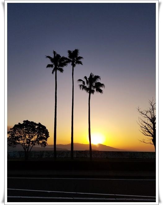 11月最後の朝陽1-1