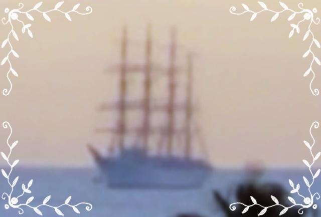 帆船 錦江湾