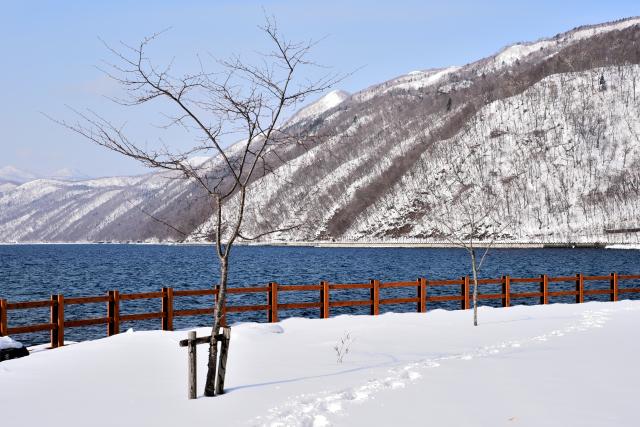 支笏湖(4)