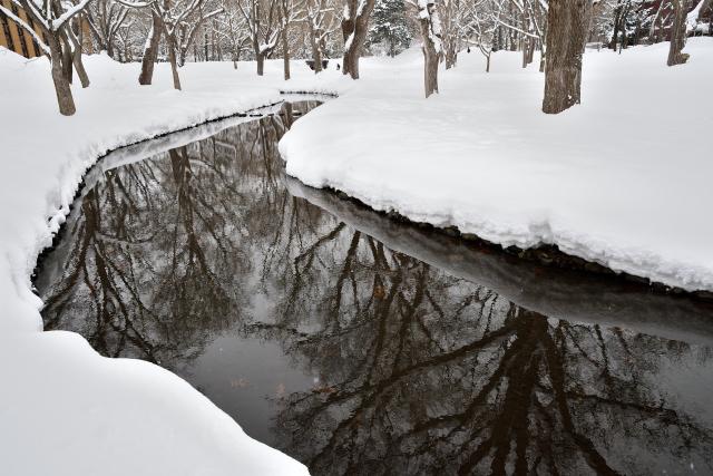 サクシュコトニ川(2)