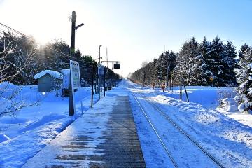 北海道旅行201901(12)