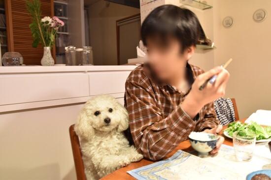 fc2blog_20190118134621be3.jpg