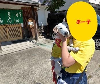 18_09_19_02.jpg