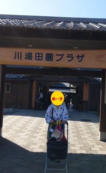 18_10_21_02.jpg