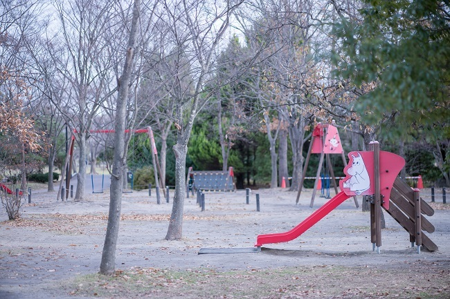 DSC07655.jpg