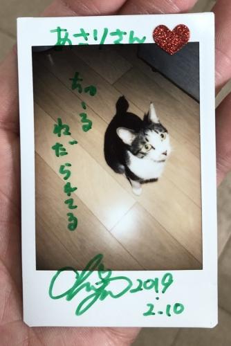 2019_0211chiyo02.jpg