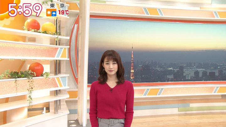 2018年11月28日新井恵理那の画像11枚目