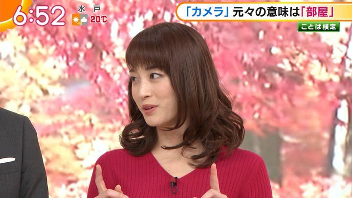 2018年11月28日新井恵理那の画像21枚目