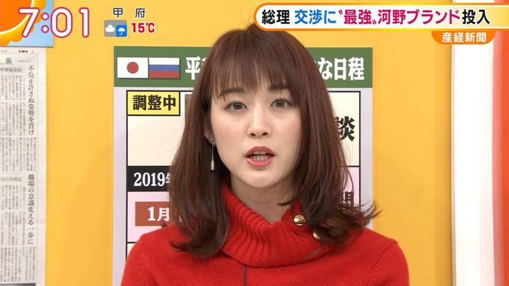 2018年12月03日新井恵理那の画像26枚目