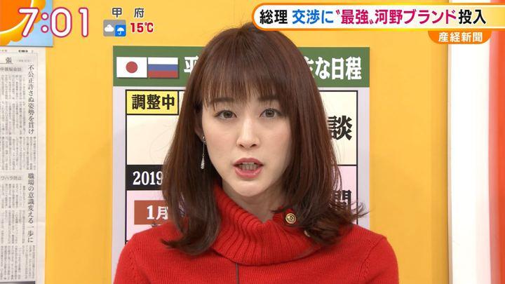 2018年12月03日新井恵理那の画像28枚目