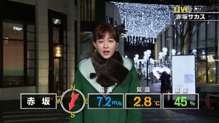 2019年01月26日新井恵理那の画像03枚目
