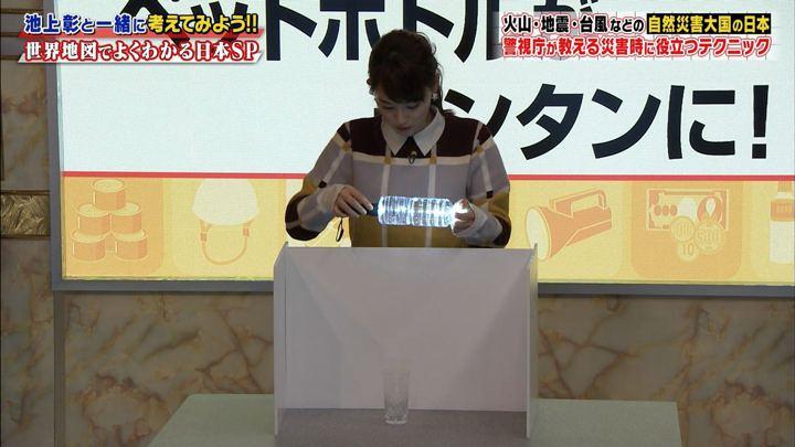 2019年01月26日新井恵理那の画像15枚目
