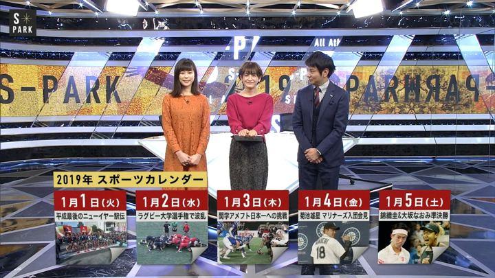 2019年01月05日宮司愛海の画像06枚目