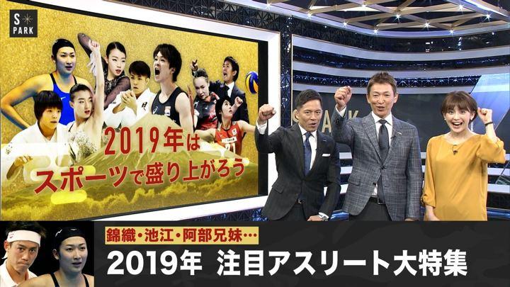 2019年01月06日宮司愛海の画像02枚目