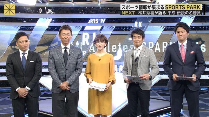 宮司愛海 S-PARK 春の高校バレー2019 (2019年01月06日放送 33枚)